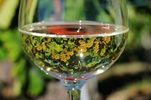 Consorzio per la Tutela dei vini Soave e Recioto di Soave. Nel 2019, da Parigi a Tokyo, da Londra a New York, il Soave alla conquista dei mercati.