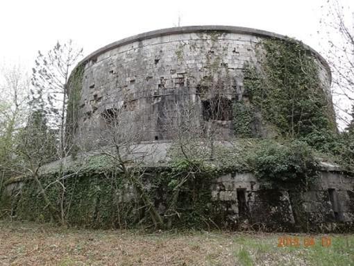 """La 1ª """"Torricella"""" massimilianea, colline di Verona."""