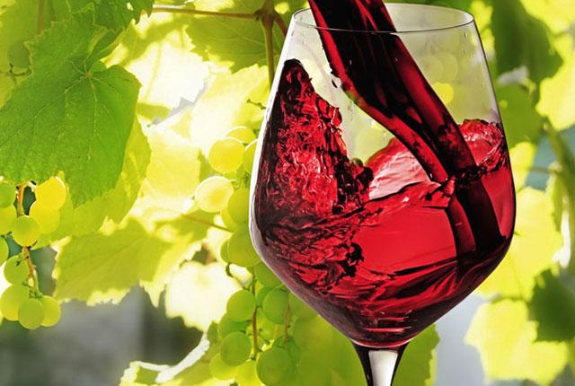 Risultati immagini per vino quadro