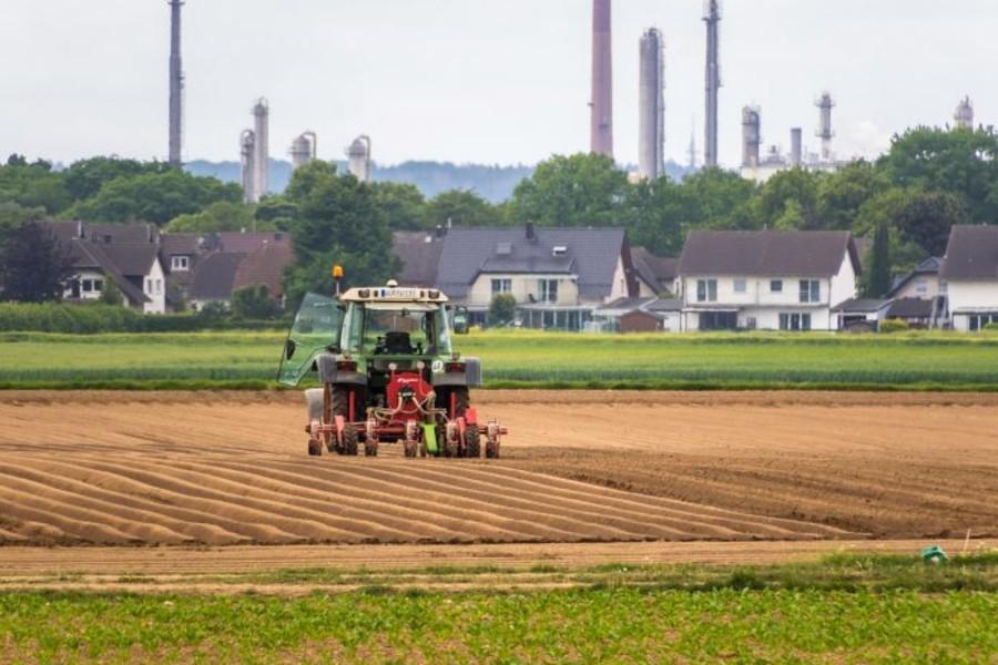 PIL in aumento grazie all'agricoltura