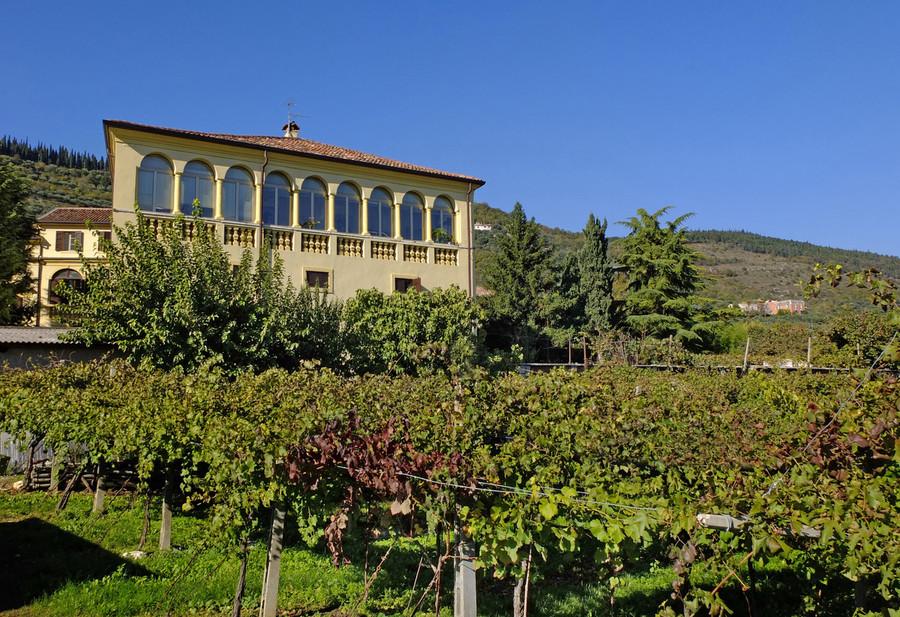 Decanter World Wine Awards: Cantina Valpantena fa il pieno di premi