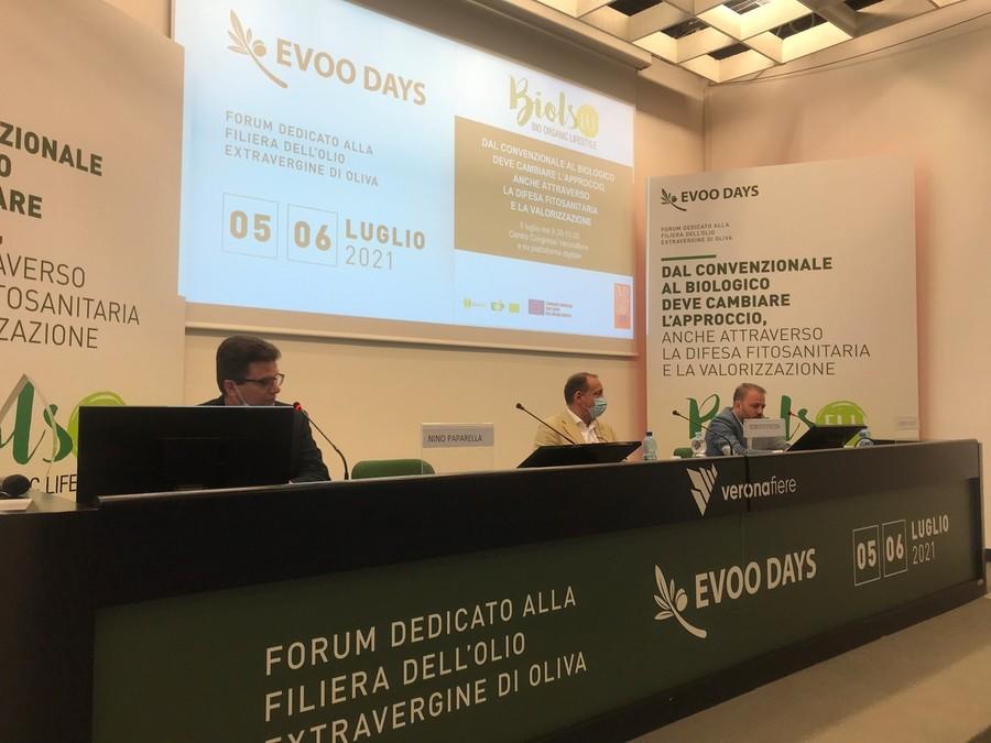 De Castro: «Confermati i 34milioni di euro destinati alle associazioni italiane dell'olio e di oliva»