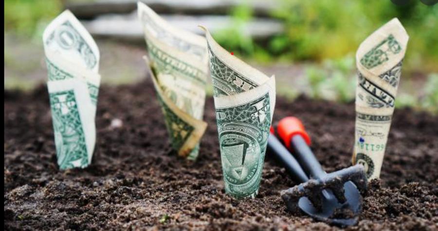 Agromafie: il business criminale del food frutta 24,5miliardi