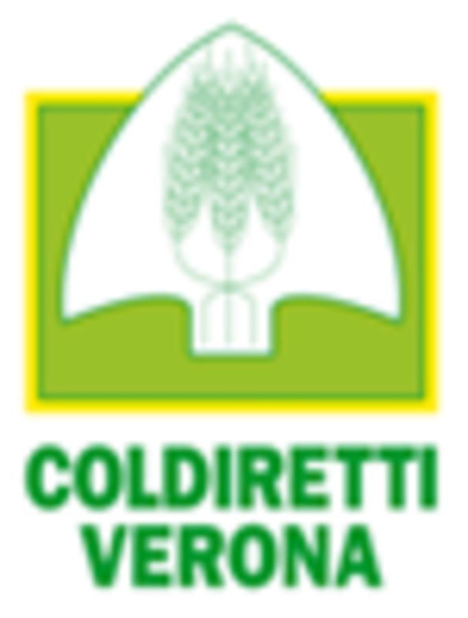Presentata al presidente Mario Draghi, la Pasqua made in Italy, dedicata a 100 famiglie bisognose veronesi  – 20mila nel Paese. Operatori di Campagna amica, impegnati nella distribuzione di alimentari.